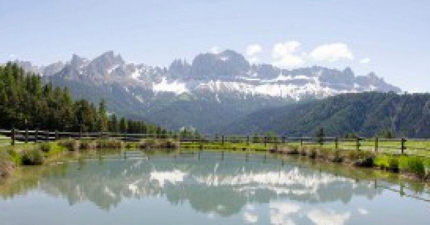 Alpin-Area_1-300x143.jpg