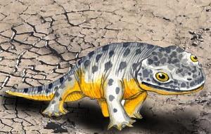 Photo of Alpi, orme di anfibi preistorici rivelano similarità con le salamandre