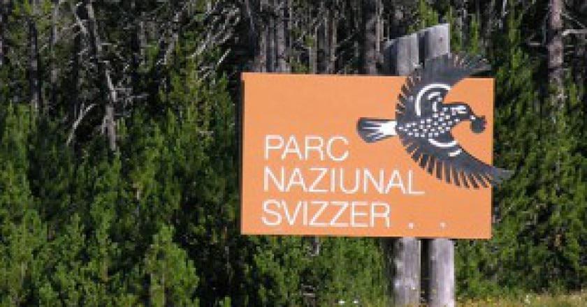 Swiss_National_Park_215-300x168.jpg