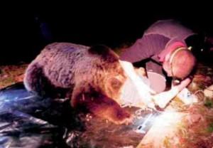 Photo of Orsa Daniza, cuccioli a rischio. Intervista a Sandro Lovari: se si devono eliminare le orse protettive, allora sono tutte