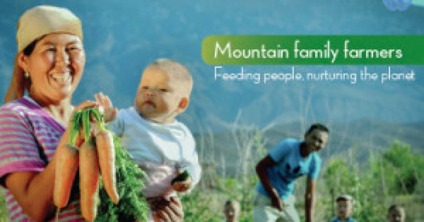 poster-international-mountain-day-2014-300x228.jpg