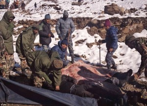 Nepali security personnel rescue stranded trekkers in Himalaya. Image source: dailymail.co.uk