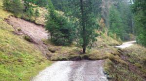 Photo of Frana in Alto Adige, ma l'albero resiste e non cade