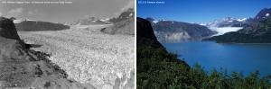 """Muir Glacier, a sinistra com'era nel 1941, a destra nel 2013 durante la spedizione di """"Sulle tracce dei ghiacciai"""" (Photo courtesy of Field/Ventura)"""