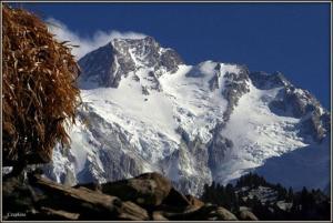 Photo of Nanga: Mackiewicz e la Revol a 7000 metri, Nardi li chiama fuori dalla sua spedizione