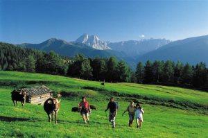 Photo of Camminare in gruppo riduce il rischio di ictus e depressione