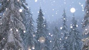 Photo of Ecco perchè la neve rende felici: 8 motivi