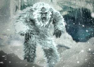 Photo of Lo Yeti è un orso? Controversia sull'analisi del Dna dei peli trovati in Himalaya
