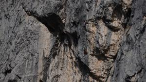 Photo of Grigna, nuova via sul Sasso Cavallo per Matteo Della Bordella ed Eugenio Pesci