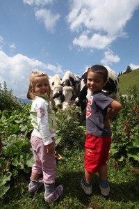 Photo of Val di Zoldo, a luglio e agosto la settimana verde del bambino
