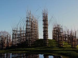 Photo of La cattedrale vegetale di Oltre il Colle: un ponte umanitario da Bergamo al mondo