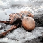 Photo of L'ultima scoperta su Oetzi: aveva la gastrite
