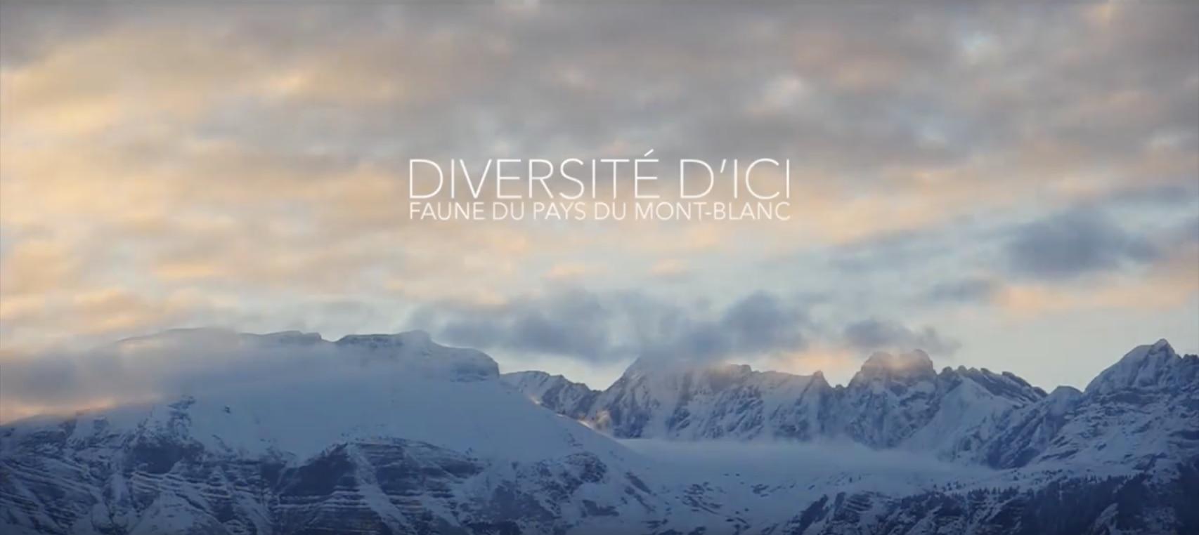 Photo of Gli animali del Monte Bianco