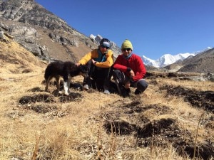 Cazzanelli e Farina, alle loro  spalle Everest, Lhotse e Baruntse. Con loro Mera, la nuova compagna di viaggio trovata sotto il Mera Peak. Photo courtesy François Cazzanelli Facebook page.