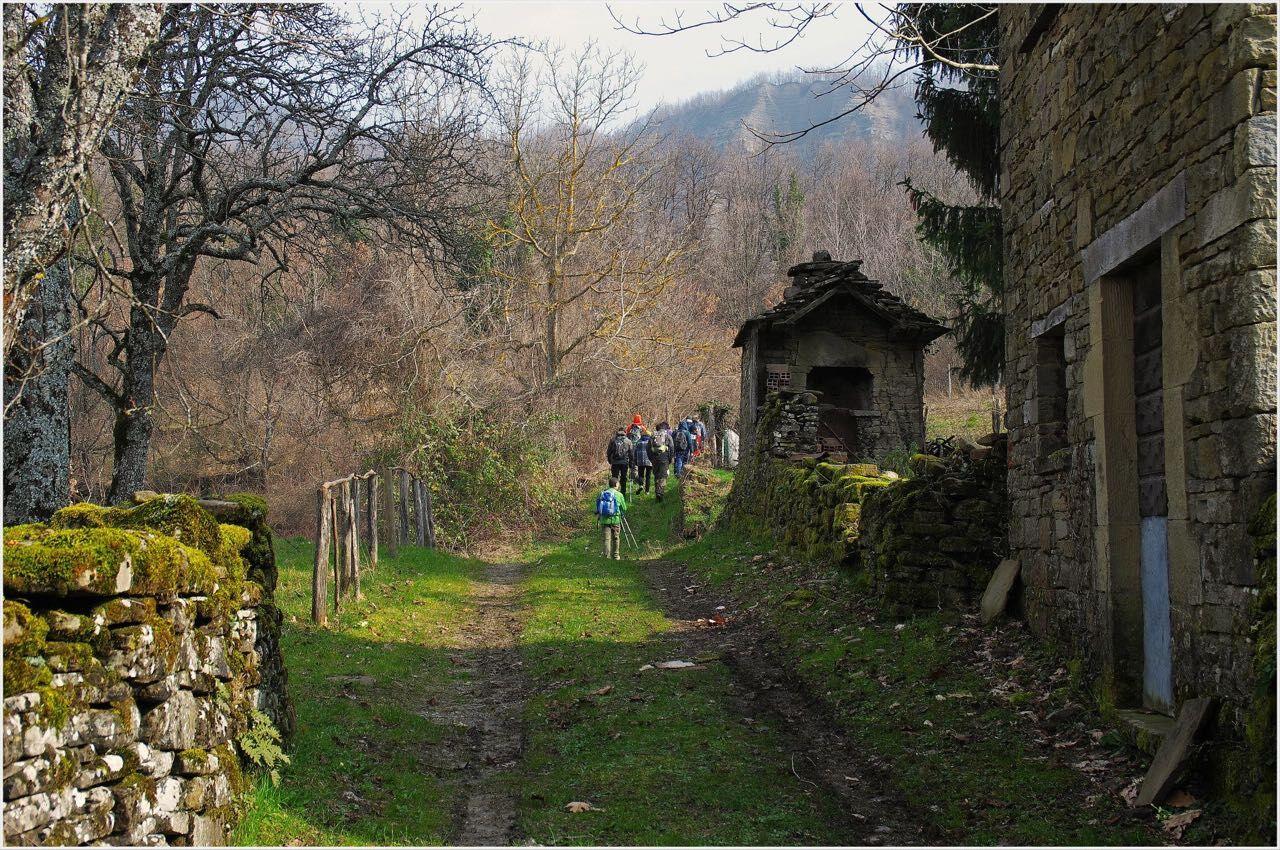Photo of Escursioni gratuite in tutta Italia il 5 giugno con le guide AIGAE