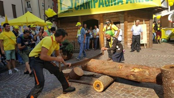 Photo of Agricoltura montana in crisi, tra polemiche e rischi