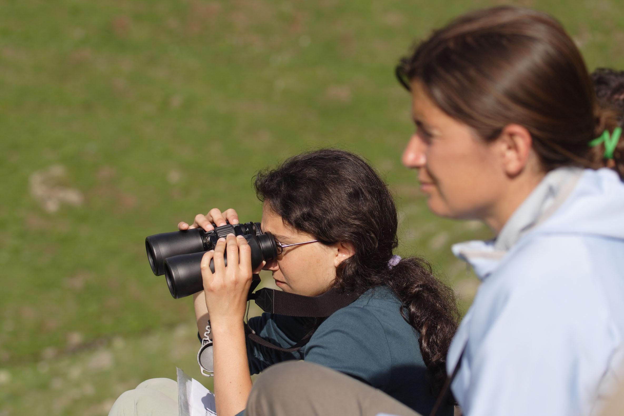 """Photo of Diventa """"Citizen scientist"""" in aiuto del Parco Nazionale Gran Paradiso"""