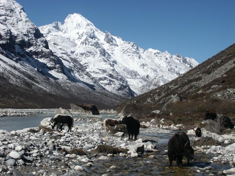 Photo of Cambiamenti climatici: in futuro maggiori inondazioni in Himalaya e siccità sulle Ande