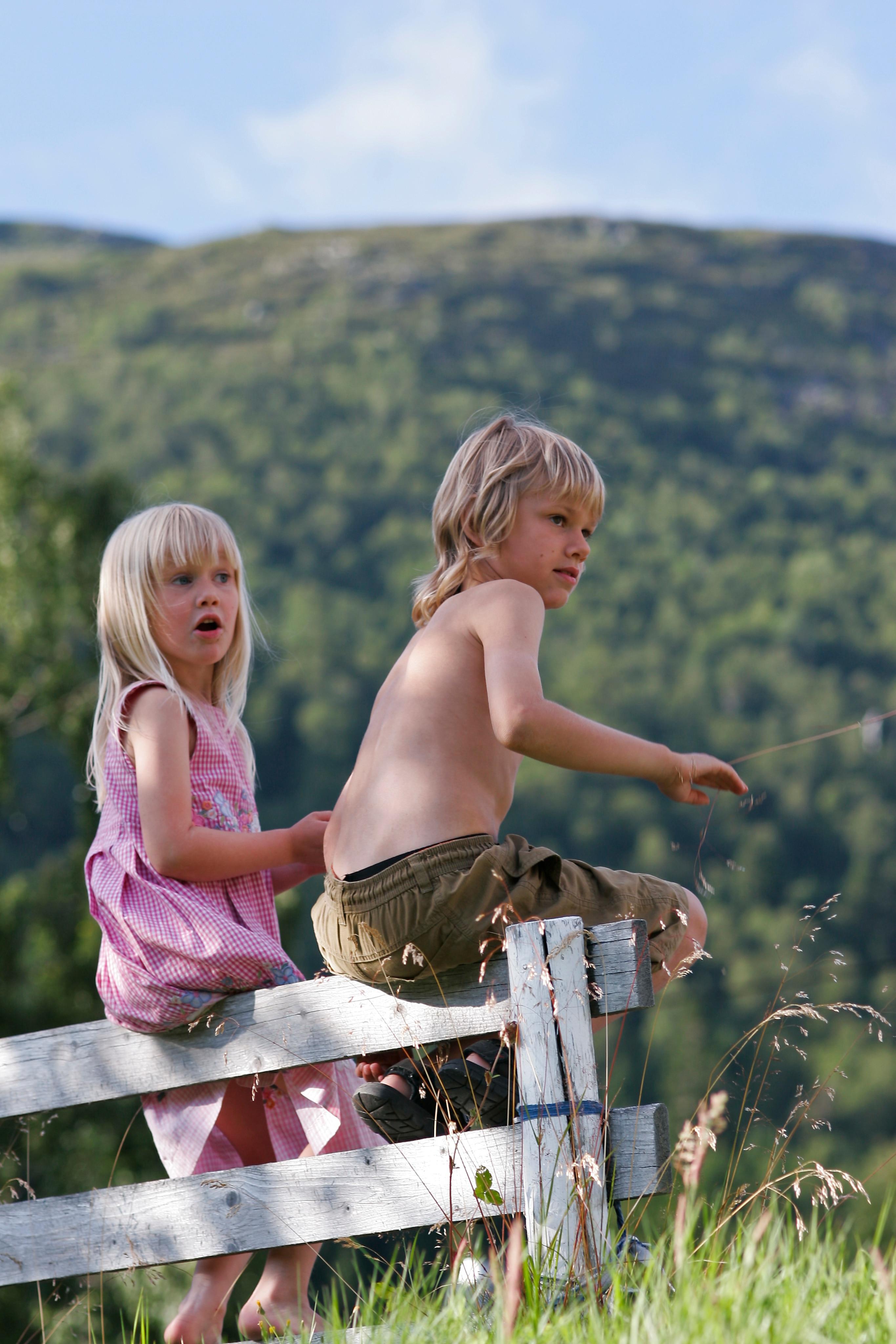 Photo of Montagna e bambini: vantaggi e falsi miti sulla quota