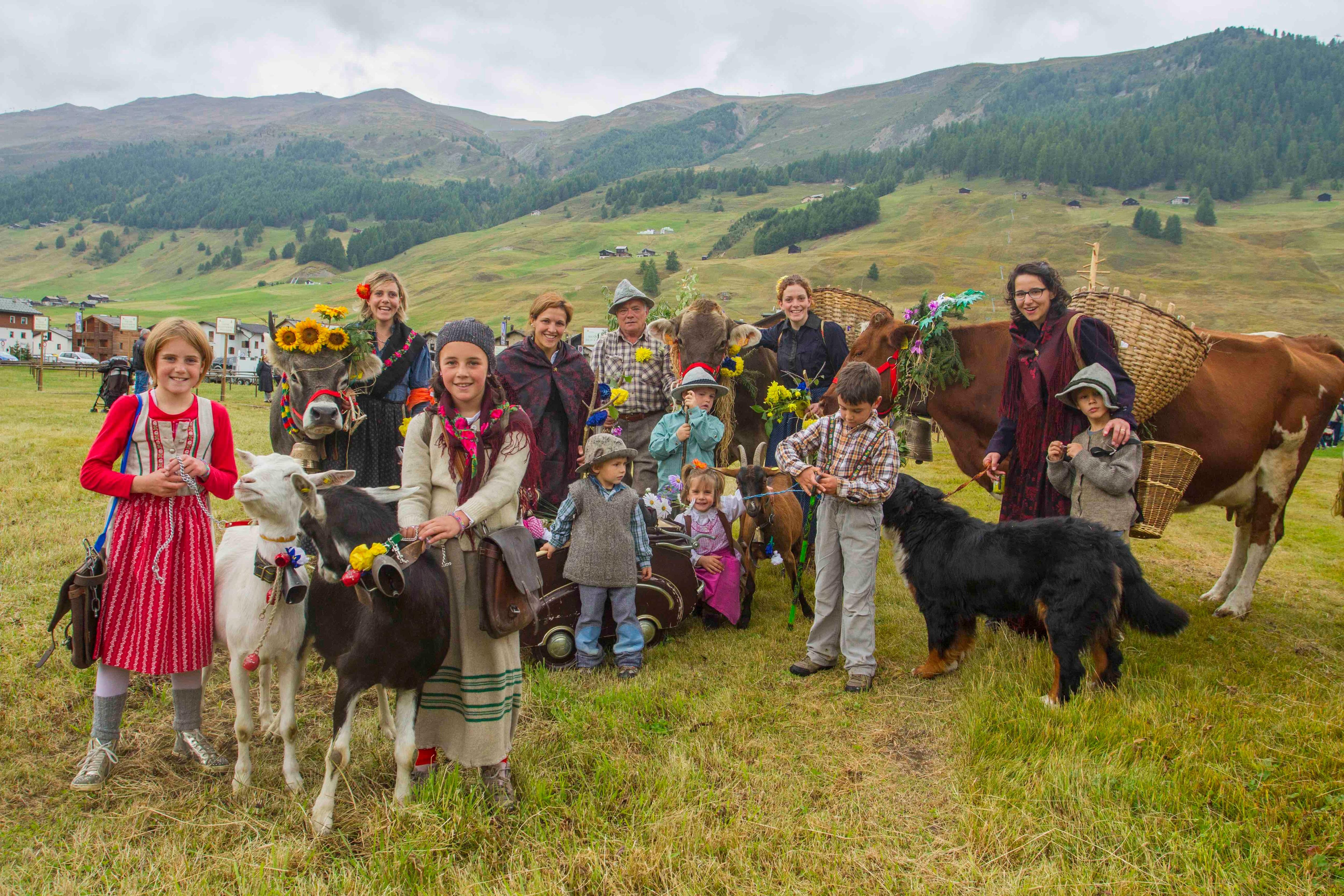 Photo of Livigno saluta gli animali delle malghe con l'AlpenFest