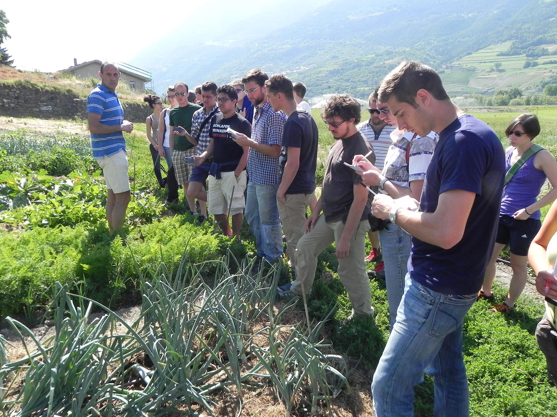 Photo of Faccia a faccia con i ricercatori dell'Università della Montagna