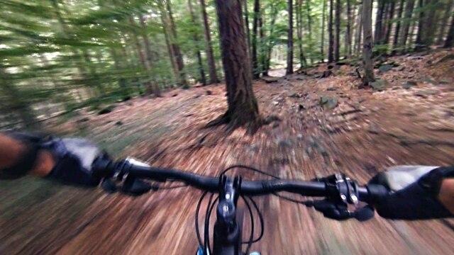 Photo of Filo d'acciaio tra gli alberi, ferito biker