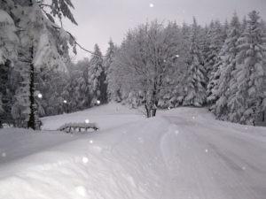 neve-alpi