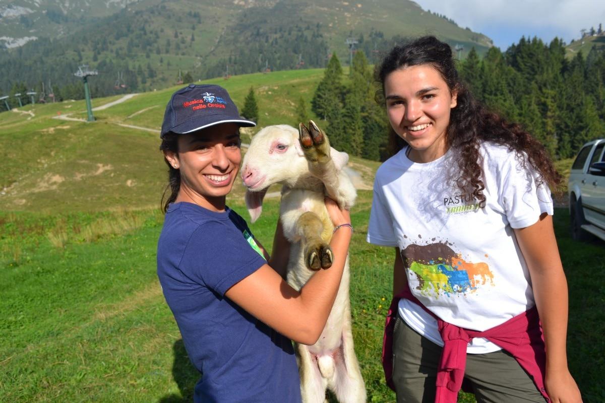 Photo of Pasturs: aperte le iscrizioni per un'estate d'alpeggio nelle Orobie