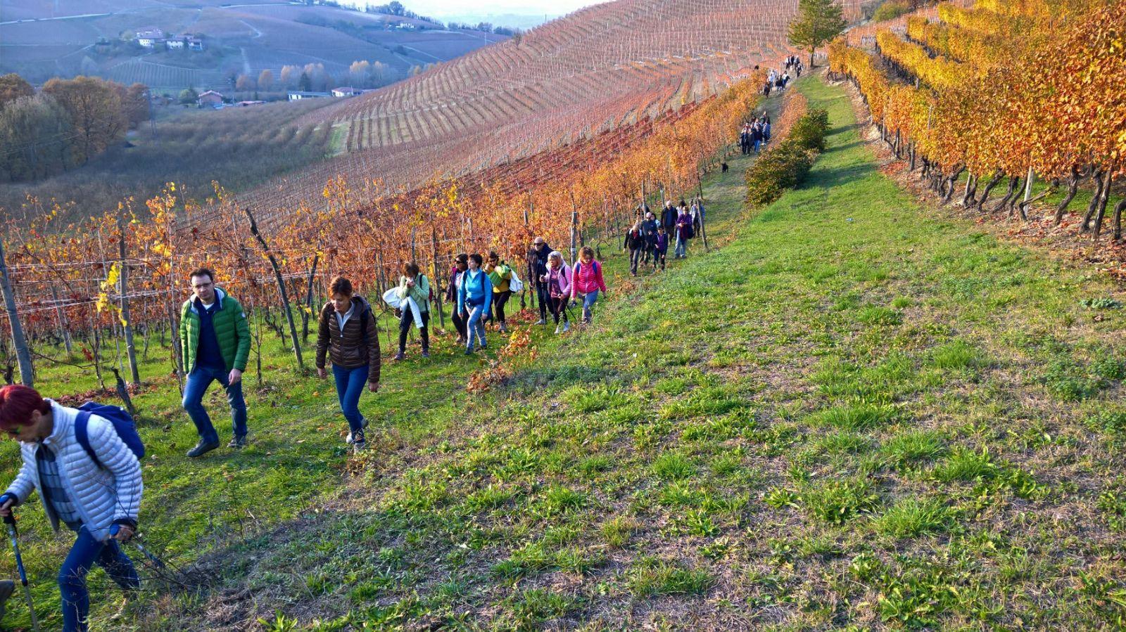 """Photo of Un trekking per tutti nel territorio del Pianalto per celebrare la """"Merla"""""""