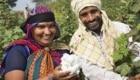 Fairtrade International La certificazione più conosciuta per il commercio equo