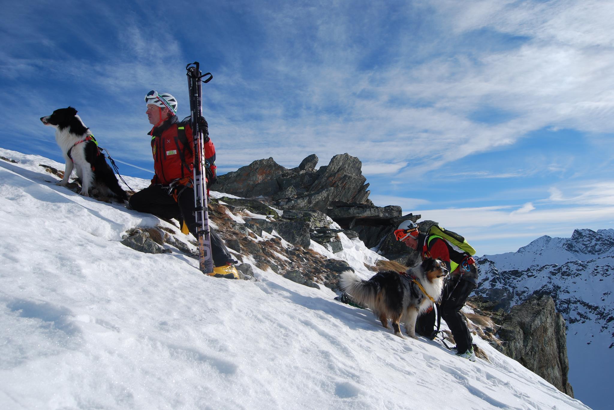 """Photo of Anche i """"cani eroi"""" del Soccorso Alpino protagonisti su Rai2"""
