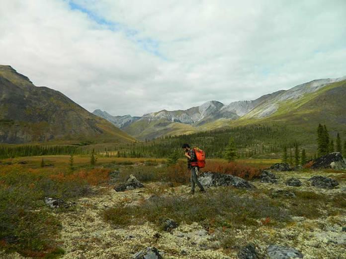 """Photo of Il viaggio """"Into the Wild"""" di Eliott Schonfeld in Alaska"""
