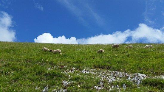 Photo of Il 18 maggio a Rieti il primo Aperimontano