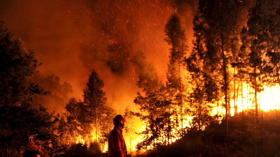 """Photo of CAI e UNCEM sugli incendi boschivi: """"La prevenzione è possibile ed efficace"""""""