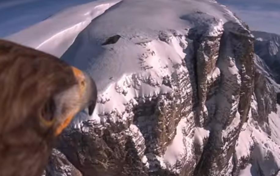 Photo of In volo con l'aquila sulle Dolomiti innevate