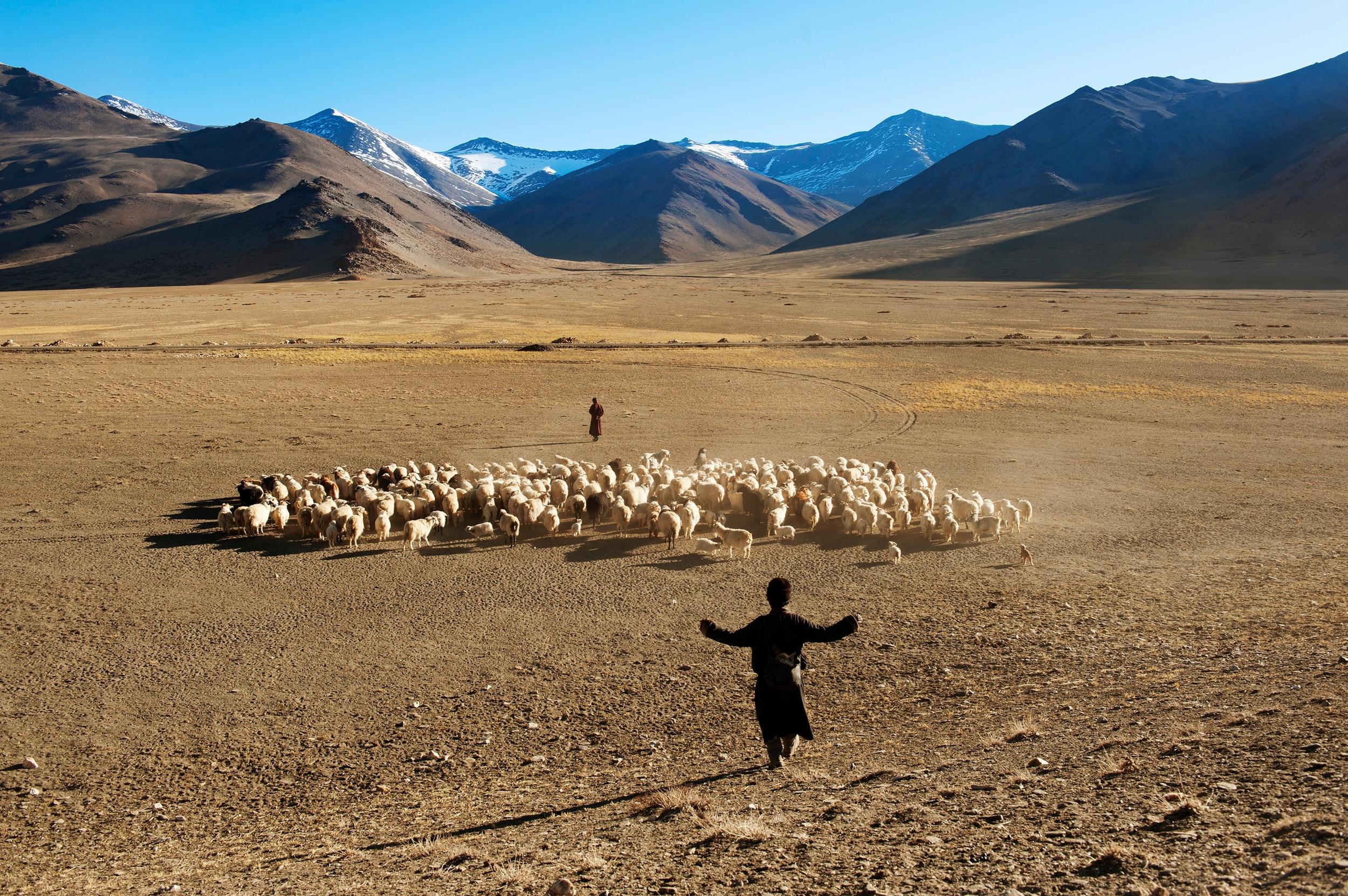 Photo of Gli uomini delle montagne visti da McCurry