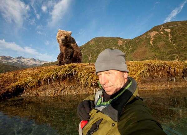 Photo of Ancora orso, tra selfie e scorribande