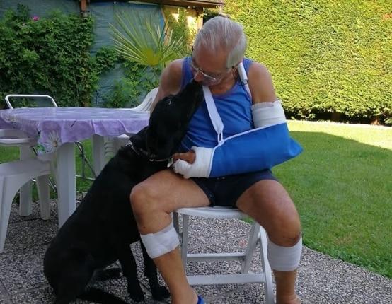 """Photo of Aggredito dall'orsa: """"L'ho colpita mentre ero a terra"""". Denunciato dagli animalisti"""