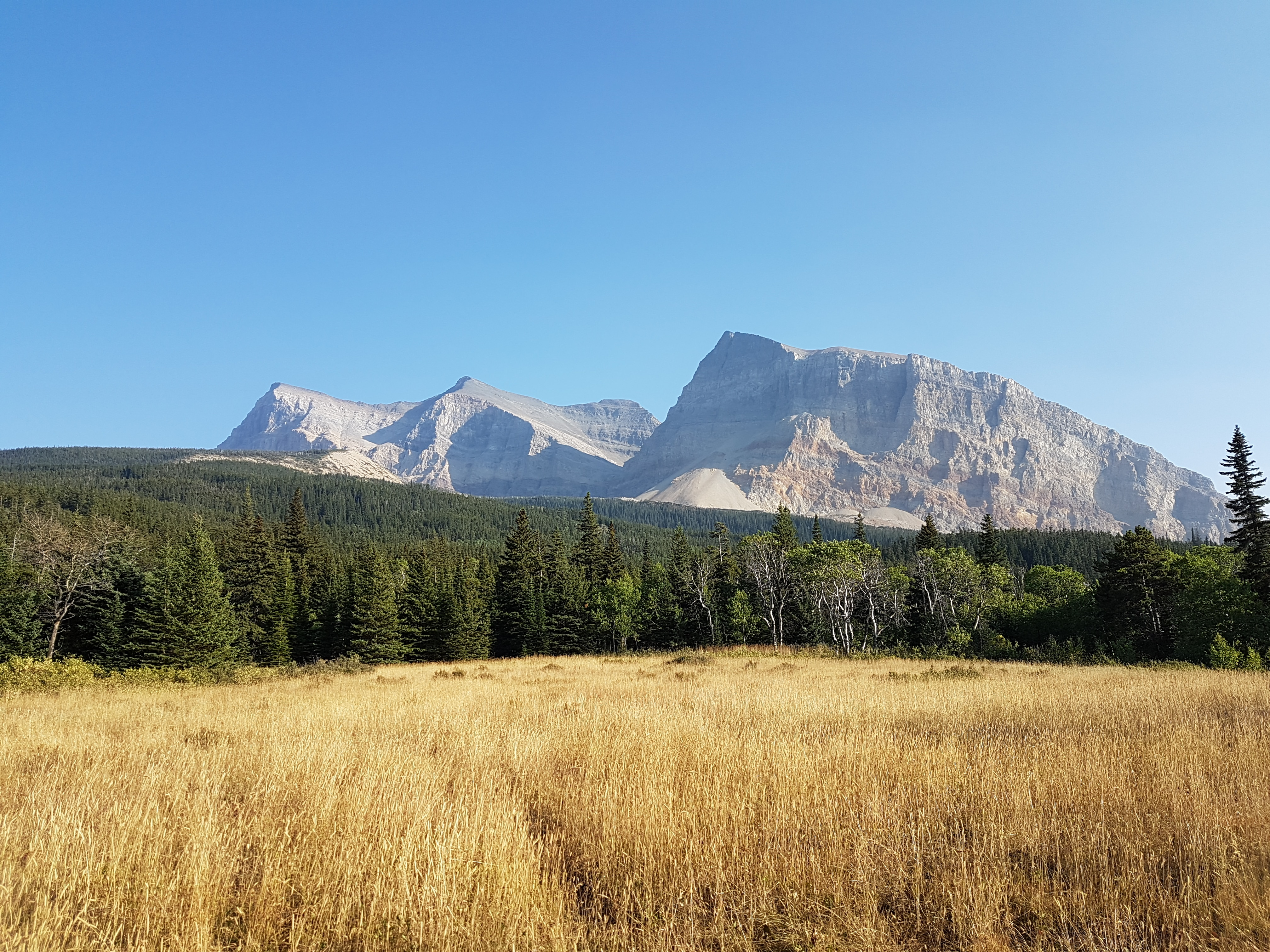 Photo of Il silenzio selvaggio: avventura nel Montana – di Diego Salvi