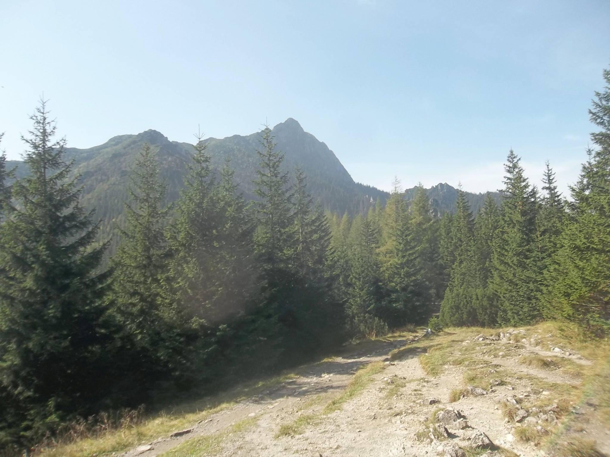 Photo of I nostri lettori – L'anello da Zakopane a Kuznice sui Monti Tatra