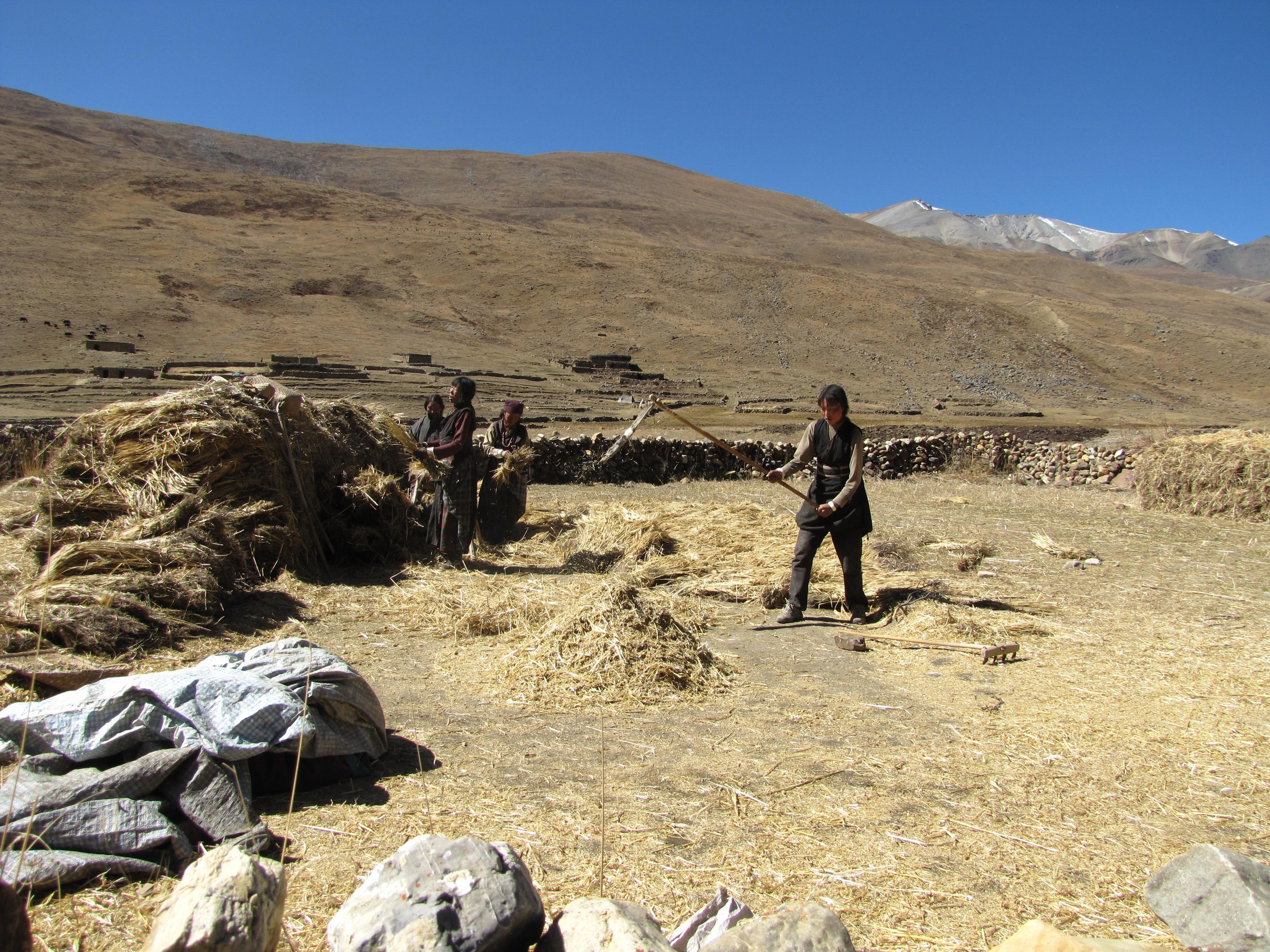 Photo of Himalaya del Dolpo – Diario di viaggio di Paolo Cognetti: dove la montagna non conosce confini