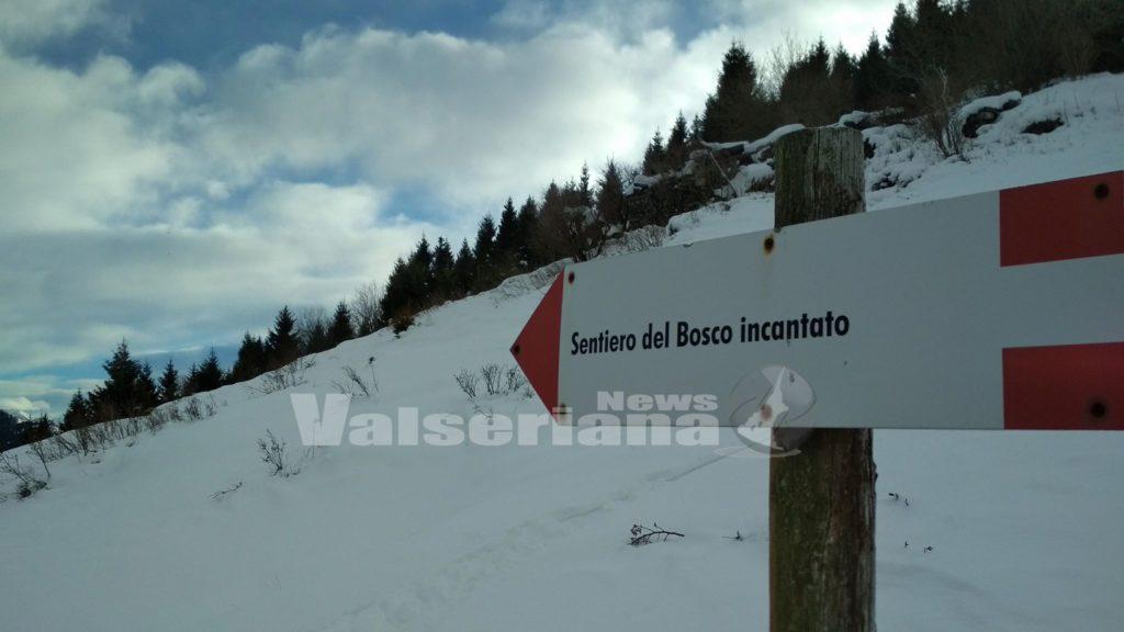 """Photo of Con le ciaspole o le pelli lungo il sentiero del """"Bosco incantato"""""""