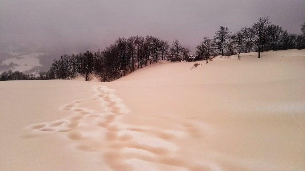 Photo of Le incredibili immagini della neve rosa sull'Appennino toscano