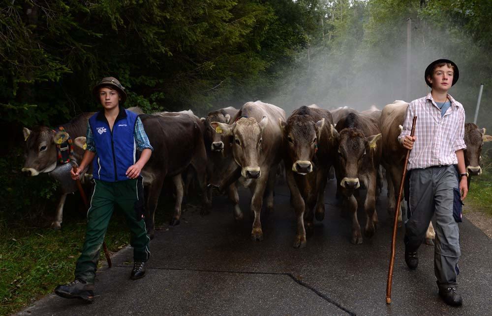 Photo of Fondi, turismo e fidanzamenti. La ricetta slovena per l'agricoltura alpina