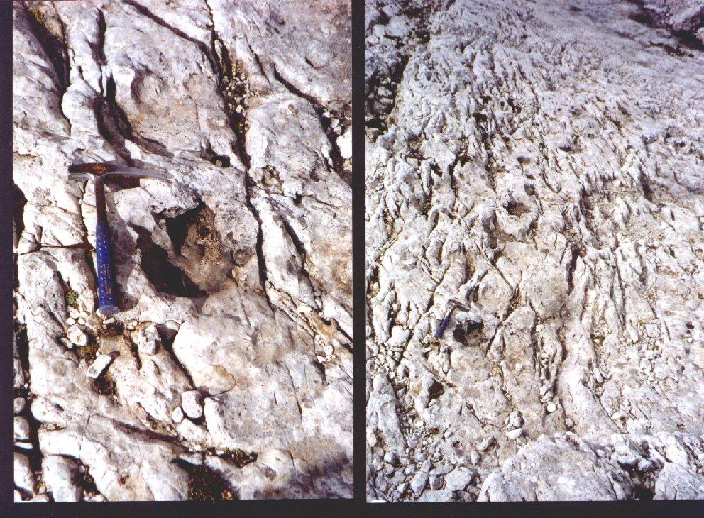 Metodo per la datazione di rocce e fossili con radioisotopi