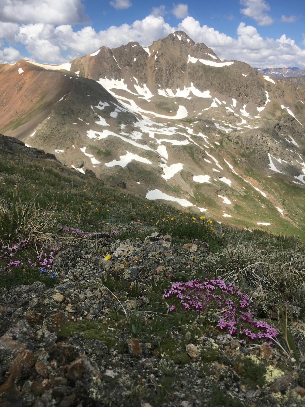 Photo of Alpinist e l'American Alpine Club lanciano un sondaggio sulle molestie sessuali
