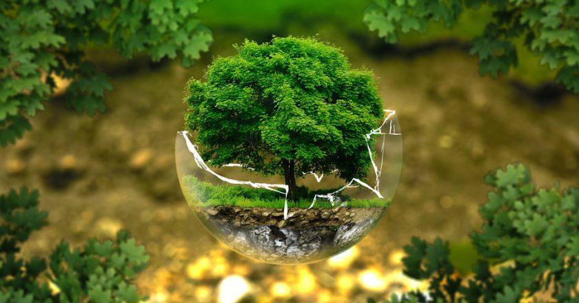 Giornata Mondiale dell'Ambiente, inquinamento, montagna, alpinismo