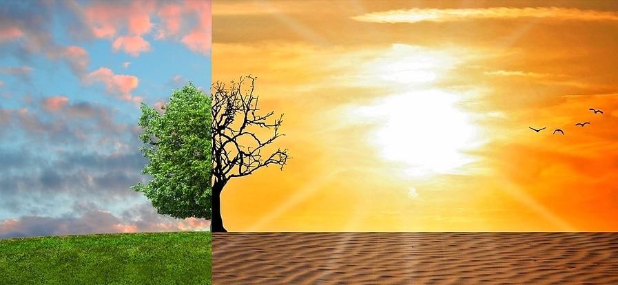ricerca, inquinamento, carbonio, clima, ambiente
