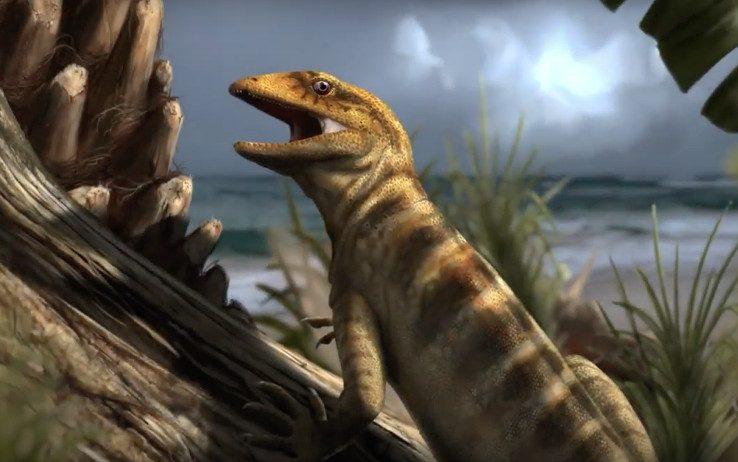 Photo of Dalle Dolomiti il fossile che sposta indietro di 75 milioni di anni l'origine di molte specie