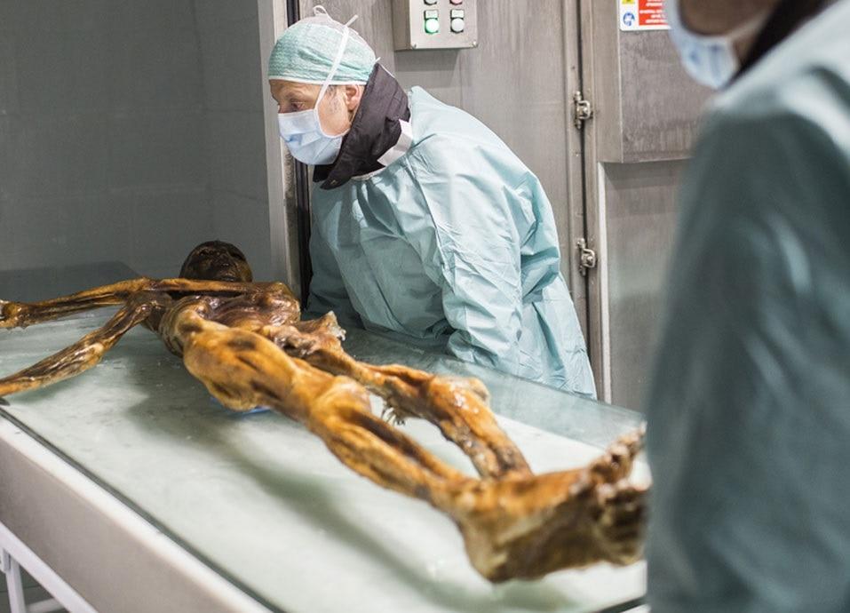 Photo of Ötzi sapeva come sopravvivere in ambiente alpino, lo dimostra il suo ultimo pasto